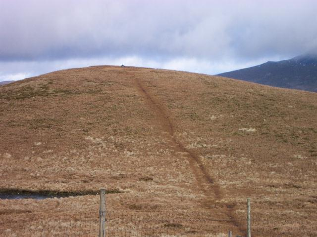 The eastern top of Lonscale Fell
