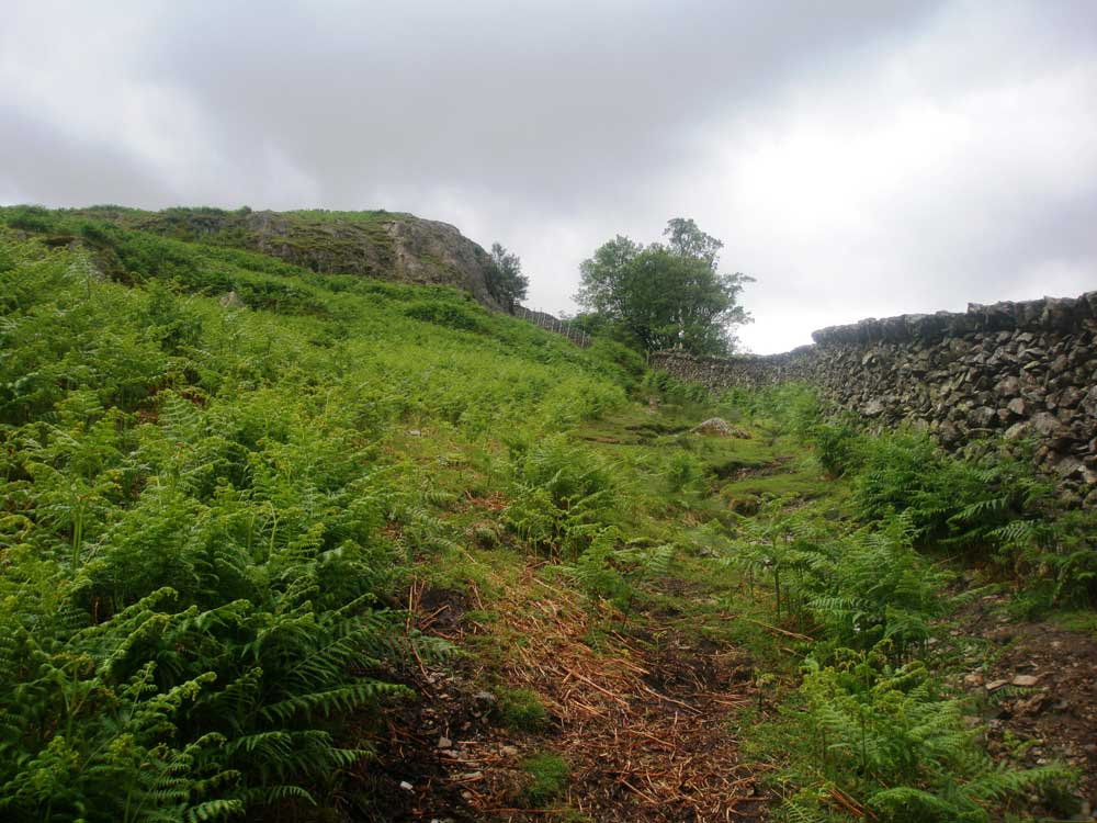 The path up Arnison Crag